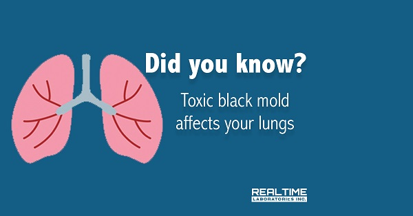 Toxic Black Mold Affect Lungs